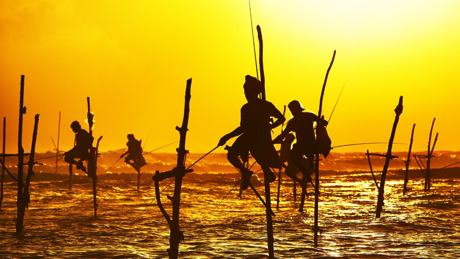 Silhouettes of the traditional fishermen at the sunset near Galle in Sri Lanka