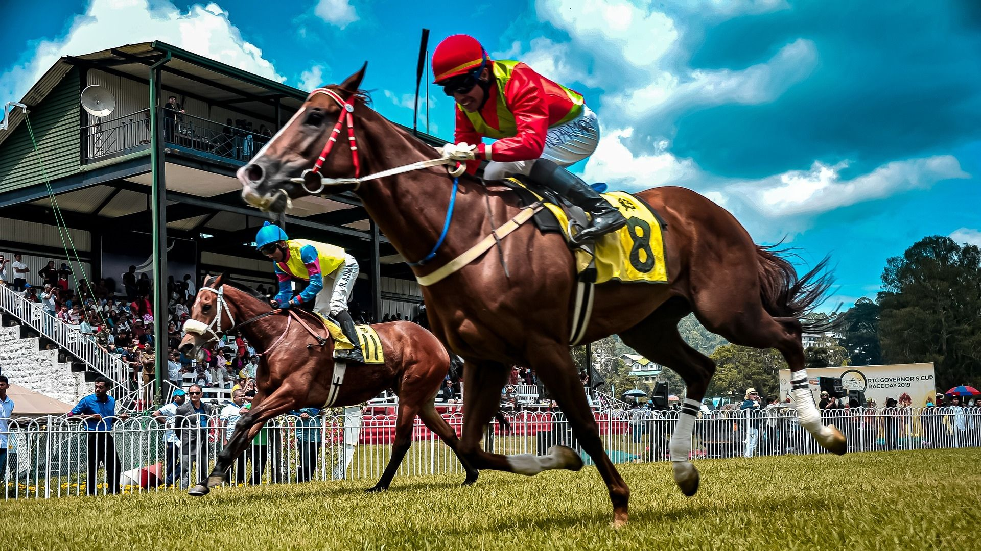 Horse Races In Sri Lanka