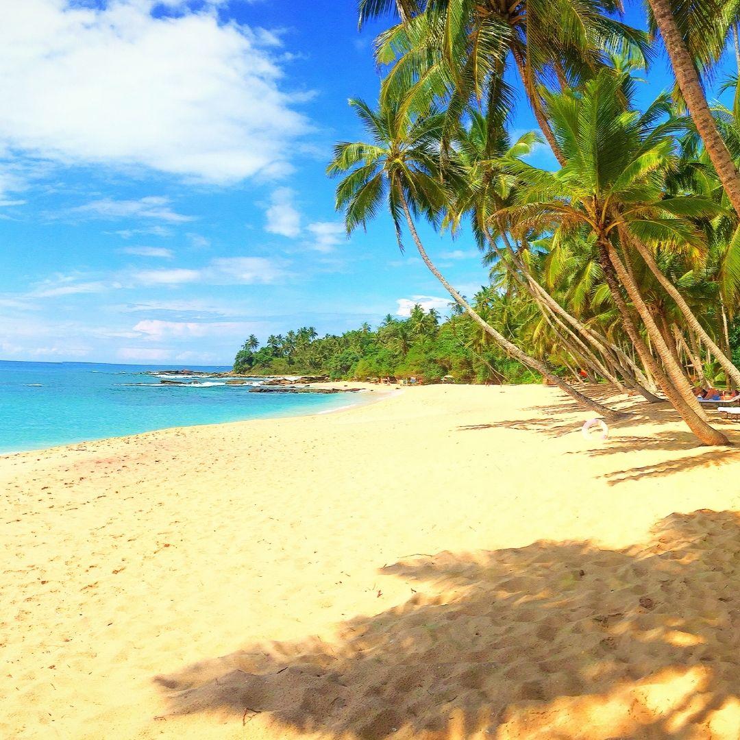 Sri Lanka Sandy Beach